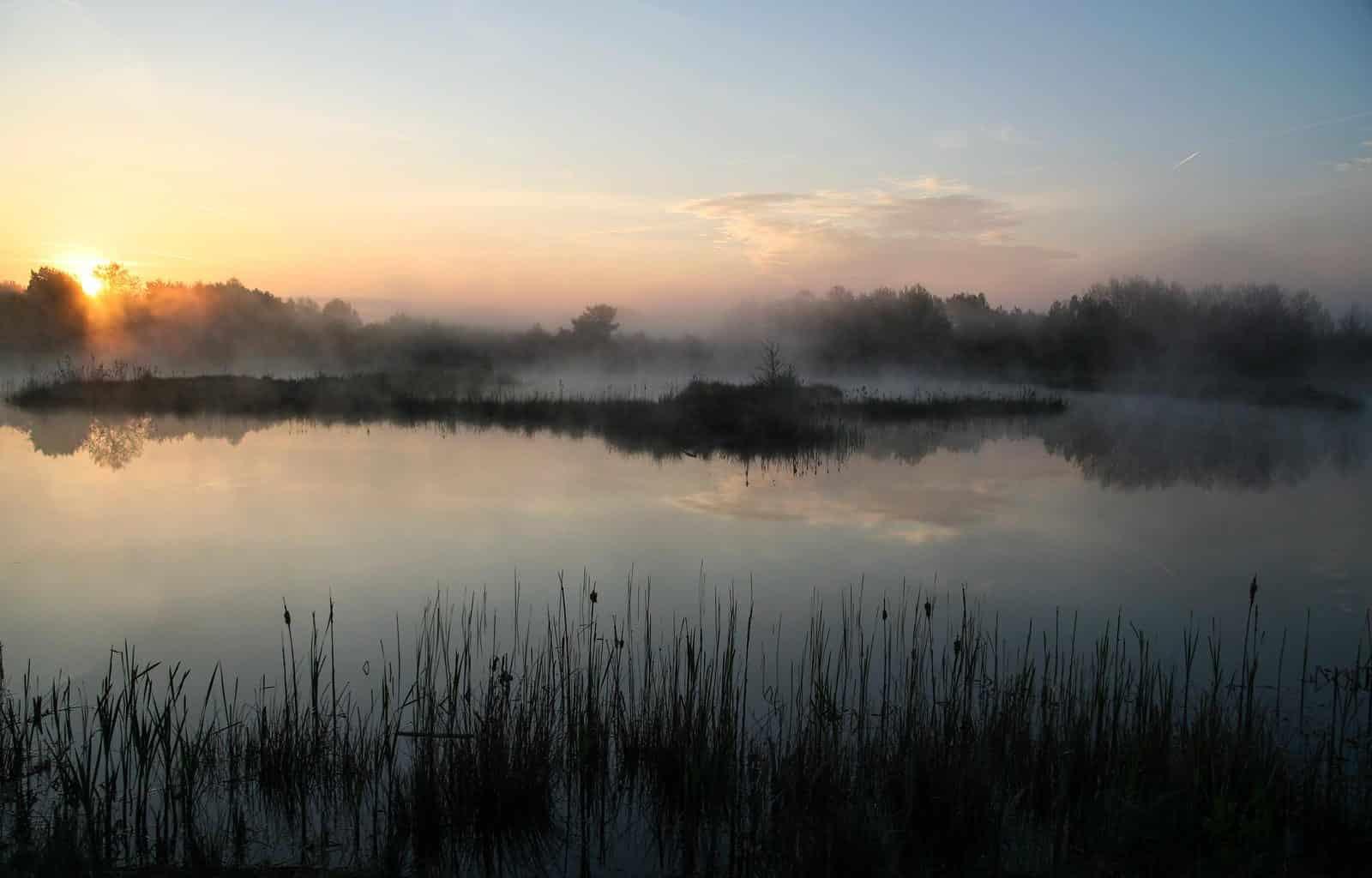 Water empowers wilderness
