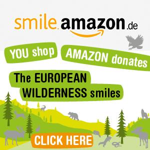 EWS_Amazon_Smile_300x300